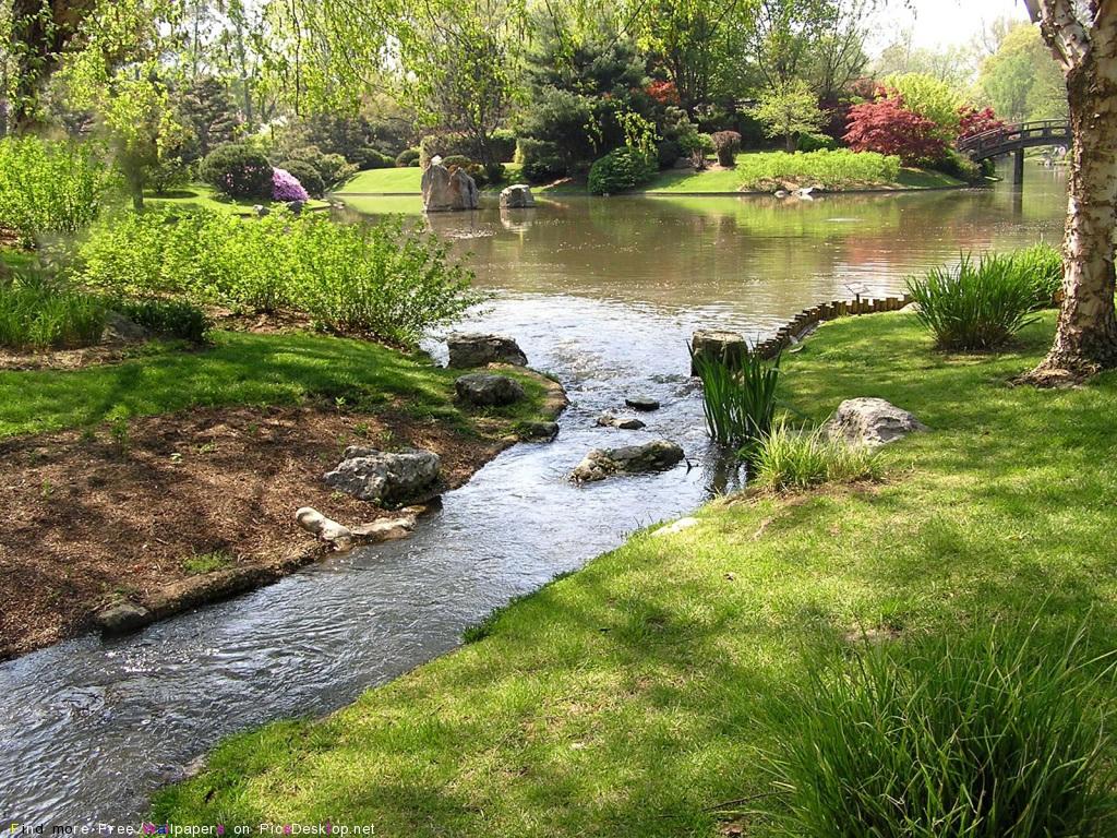 Природа весна красивые бесплатные