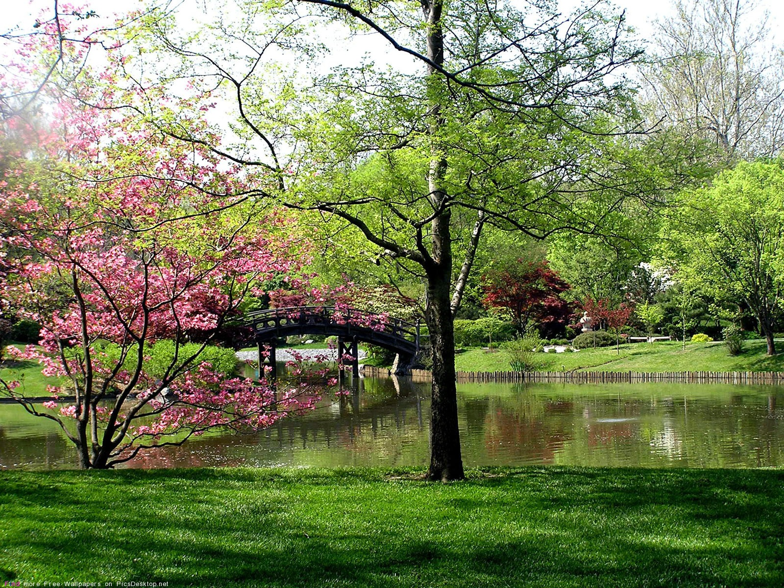 , Весна - Красивые Бесплатные фото ...: picsdesktop.net/Springtime/1600x1200_PicsDesktop.net_11.jpg.htm