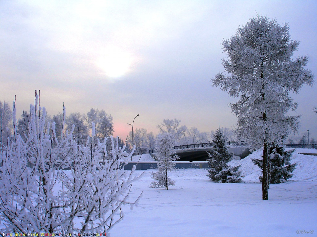 Природа зима красивые фото обои для